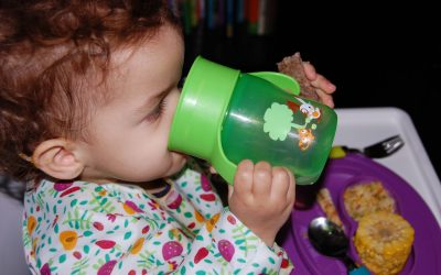Baby Led Weaning – Mitos e Realidades