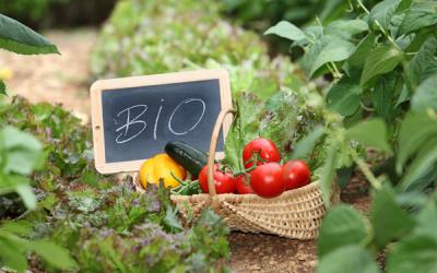 Porquê produtos biológicos?